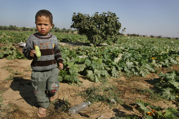Gaza+Humanitarian+Crisis+Worsens+L4mTw3MEuQrl