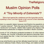 Damned Lies, Statistics, and Muslims