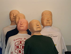 First aid training dummies.